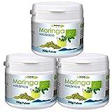 600 Gramm veganes Bio Moringa Pulver von Moringa Volcanica kauen! (3 x 200 Gramm Set). Moringa aus Spanien / Teneriffa! Superfood Pulver für Smoothies!