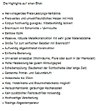 Kaminofen Victoria Deluxe SL mit 5-7kW Holz&Kohle Werkstattofen Kamin - 4