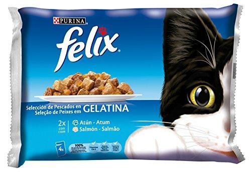 Purina Felix Gelatina Surtido Pescados - Paquete de 10 x (24 x 100 g) - Total: 4 kg