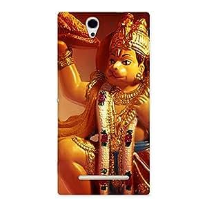 Enticing Lord Hanuman Multicolor Back Case Cover for Sony Xperia C3