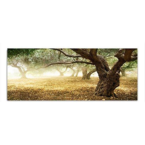 DekoGlas Glasbild \'Bäume Gras\' Acrylglas Bild Küche, Wandbild Flur Bilder Wohnzimmer Wanddeko, einteilig 125x50 cm
