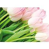 Vlies Fototapete PREMIUM PLUS Wand Foto Tapete Wand Bild Vliestapete - Blumen Rosa Tulpen Blüte grün rosa natur - no. 1110, Größe:368x254cm Vlies