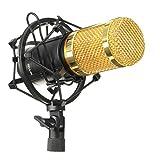M.Way Microphone à Condenseur Professionnel Multimédia Filaire Studio Audio Enregistrement avec le Support de Pince Anti-Choc pour PC Portable Skype MSN Noir