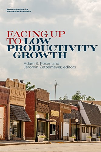 Facing Up to Low Productivity Growth (English Edition)