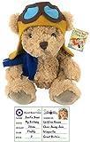 Bertie the Flying Pilot Bear Plush 20cm