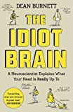 #7: The Idiot Brain