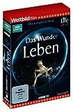 Life - Das Wunder Leben: Die komplette Serie (4 DVDs)