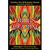 Drugs of the Dreaming: Oneirogens: Salvia Divinorum and Other Dream-Enhancing Plants