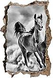 Stil.Zeit Monocrome, Western Pferde in Wüste mit Fohlen Wanddurchbruch im 3D-Look, Wand- oder Türaufkleber Format: 62x42cm, Wandsticker, Wandtattoo, Wanddekoration