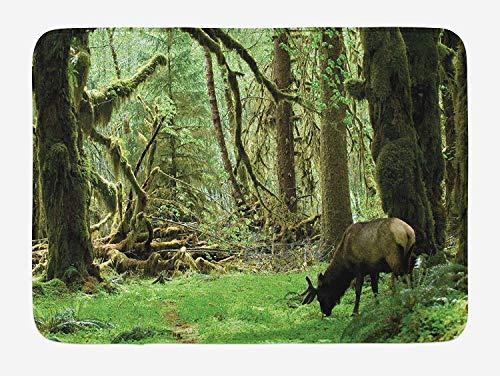 JIEKEIO Rainforest Bath Mat, Roosevelt Elk in Rainforest Wildlife National Park Washington Antlers Theme, Plush Bathroom Decor Mat with Non Slip Backing, 23.6 W X 15.7 W Inches, Green Brown -