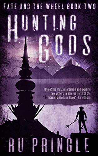 Book cover image for HUNTING GODS: the epic world established in 'A Time of Ashes' just got darker and more intense. (Fate and the Wheel Book 2)