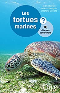 Les tortues marines par Ciccione