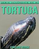 Tortuga: Libro de imágenes asombrosas y datos curiosos sobre los Tortuga para niños (Serie Acuérdate de mí)