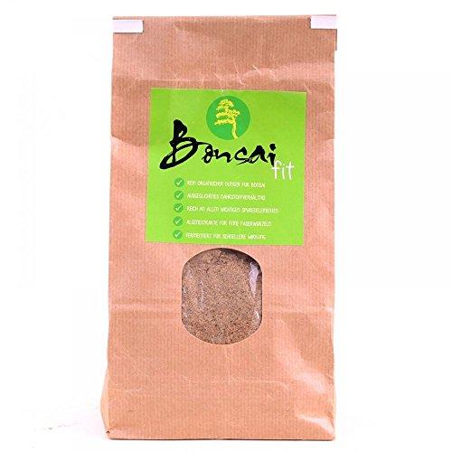 Bonsai-Shopping 63022