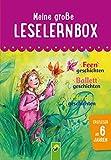 Meine große Leselernbox: Feengeschichten, Ballettgeschichten, Pferdegeschichten: Mit 3 Lesestufen (Leselernbuch)