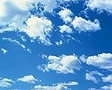 Tsqqst Fototapete 3D Große Wand- Wohnzimmerhotel-Dachdecken-Hintergrundtapete Freizeitbarendecke Tapete Weiße Wolke Des Blauen Himmels