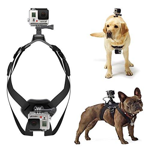 Nuovo arrivo cane Fetch cablaggio toracica cintura per GoPro Hero 4/3+/3camera–nero