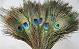 #8: Peacock Mor Pankh Feather Tails In Full Length (Set Of 20 Pcs).