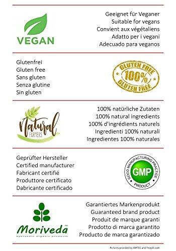 Garcinia Cambogia Kapseln (4:1 Extrakt, 60% HCA) 100% Vegan mit Kalzium, Fettblocker, Fat Blocker – garantiert frei von Trennmitteln und Stearaten, 90 Caps