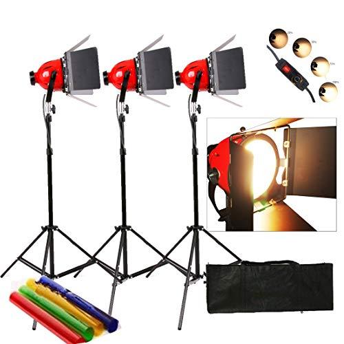Dimmer in Pro Photo Video Studio Continuous Red Head Light 800w Video Licht 3set 5mcord gebaut - Tungsten Light Kit