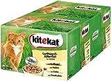 Kitekat Katzenfutter Geflügel-Allerlei in Gelee