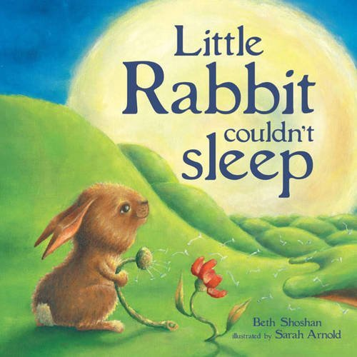 Little Rabbit Couldn't Sleep by Beth Shoshan (2009-08-02)