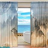 Sheer Gardine Cool Wolf Animal Full Moon Voile Tüll-Fenstervorhänge, 2 Paneele Set für Zuhause, Küche, Schlafzimmer, Wohnzimmer, 55 W x 198 L, Polyester, Image 333, 55x78x2(in)
