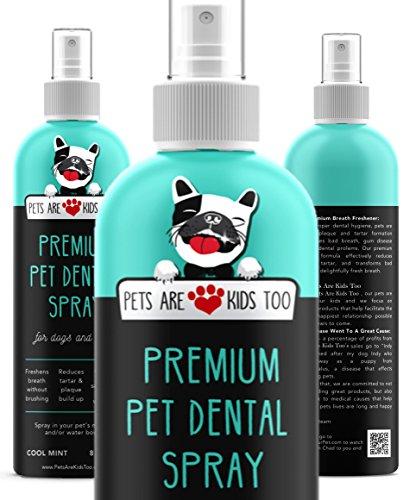 ustier-Zahnspray (groß - 8Oz) Beste Möglichkeit, schlechten Hundeatem & schlechten Katzenatem zu beseitigen (1 Flasche) ()