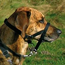 Amazon.es: arnes de perro grande - Trixie