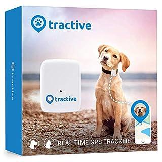 Rastreador Tractive GPS para perros y gatos - resistente al agua se ajusta al collar, color blanco (B00F8A1ZBA)   Amazon Products