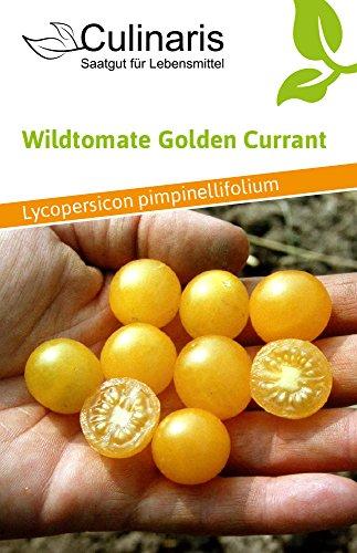 Culinaris 000 Wildtomate Golden Currant (Bio-Wildtomatensamen)