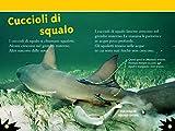 Squali-Livello-3-Ediz-a-colori