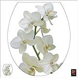 PLAGE 260207 Adhesivo de decoración para tapas de WC Sticker Smooth, Orquídea, 40 x 34 cm
