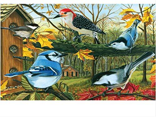 forin Puzzle 1000 Puzzleteile Vogelspielzeug Home Decoration Educational Jigsaw 75X50CM