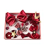 HENGSONG Girls Bowknot Flower Hairpin Lovely Hair Clip Bow Ribbon Headdress Hair Accessory Set of 10 (Wine Red)