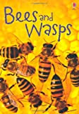 Bees and Wasps (Beginners Series)