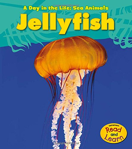 Jellyfish (Heinemann Read and Learn: A Day in the Life: Sea Animals)