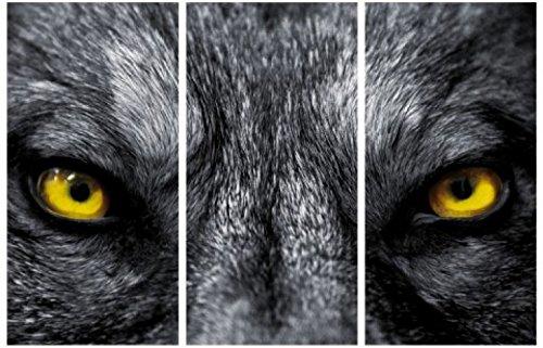 1art1 58580 Wölfe - Schau Mir In Die Augen, Kleines, 3-Teilig Poster Leinwandbild Auf Keilrahmen 120 x 80 ()