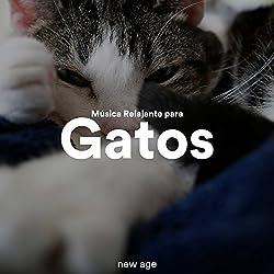 Música Relajante para Gatos