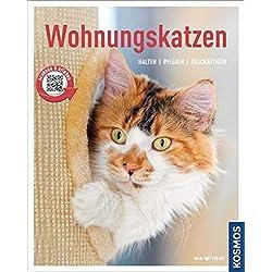 Wohnungskatzen: halten, pflegen, beschäftigen (Mein Tier)