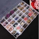 Homesoul Celebrationgift 36 Adjustable Multipurpose Plastic Storage Box for Jewellery Medicine Pills Tools , Medium, White