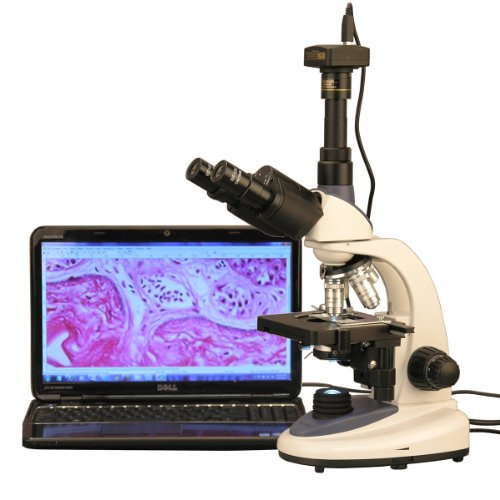 Amscope t380C-m 40x -2500x 1W LED Trinocular Compound con 1.3MP fotocamera digitale