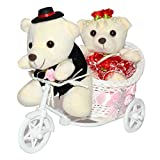 Anishop Beautiful Cycle Baskt Gift with ...