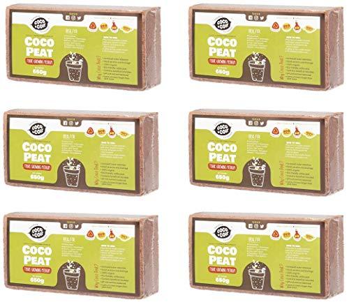 Coco&Coir® 6 x 650g (9L) Kokoserde | Kokosblumenerde| Kokospflanzerde | Kokos-Kompost | Blumenerde aus Kokosfaser | Kokostorf | Kokoseinstreu Bodengrund für Reptilien | 100{9c86555191369a7af526a523fab913e6edc4682ae41219ee22f48d553fff2524} natürlich | Kokoshumus