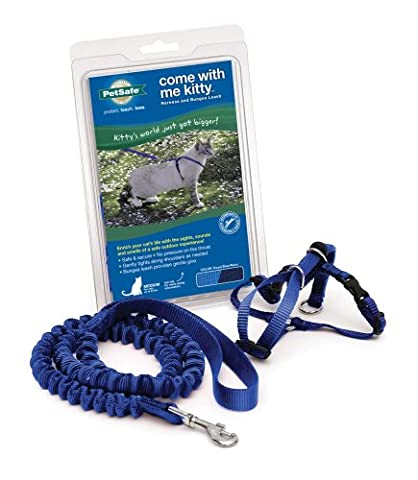 PetSafe Come With Me Kitty Harness and Bungee Leash, Small, Royal Blue