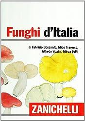 Le 10 migliori guide e libri sui funghi su Amazon