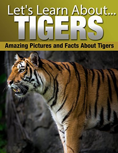 Tigers: Amazing Pictures and Facts About Tigers (Let's Learn About) (English Edition)
