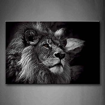 Schwarz Und Weiß Grau Löwe Kopf Porträt Wandkunst Malerei Das Bild Druck  Auf Leinwand Tier Kunstwerk