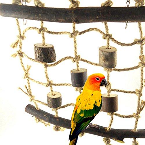 Greenlans Vogel Kletterseil Netz Swing Leiter Spielzeug für Papageien Ara African Greys Edelpapageien Wellensittiche Kakadus Sittiche Nymphensittiche Lovebirds Finch Käfig Sitzstange Spielzeug Leiter