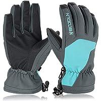 Skihandschuhe, HiCool Schi Handschuhe Winter für Skifahren Radfahren Wandern